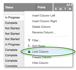 Lock or Unlock Columns and Rows | Smartsheet Learning Center
